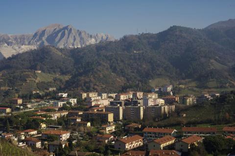 Bonascola