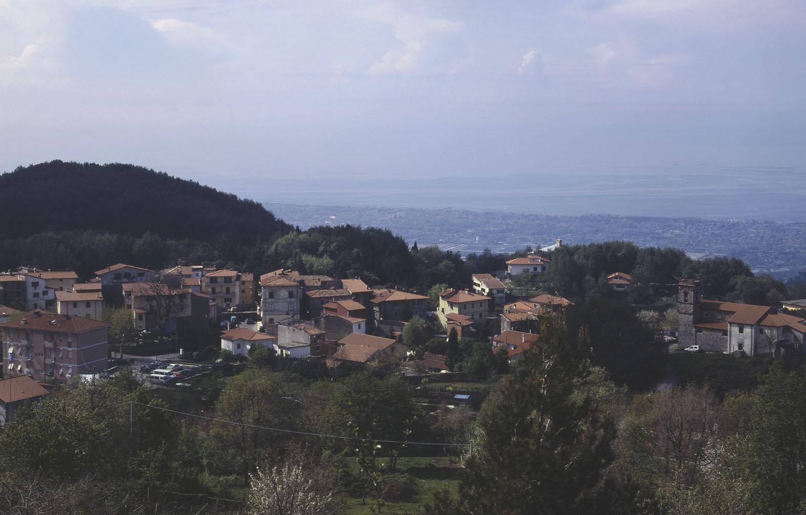 Bergiola Foscalina