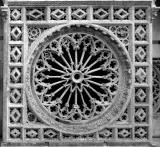 Il Duomo di Carrara - Cattedrale di S.Andrea - Il Rosone